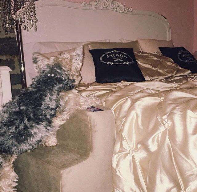 Pin By C M On H O M E In 2019: Gabriella Demartino Bedroom Chic