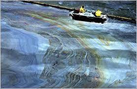Resultado de imagen para efecto grasa y contaminación agua