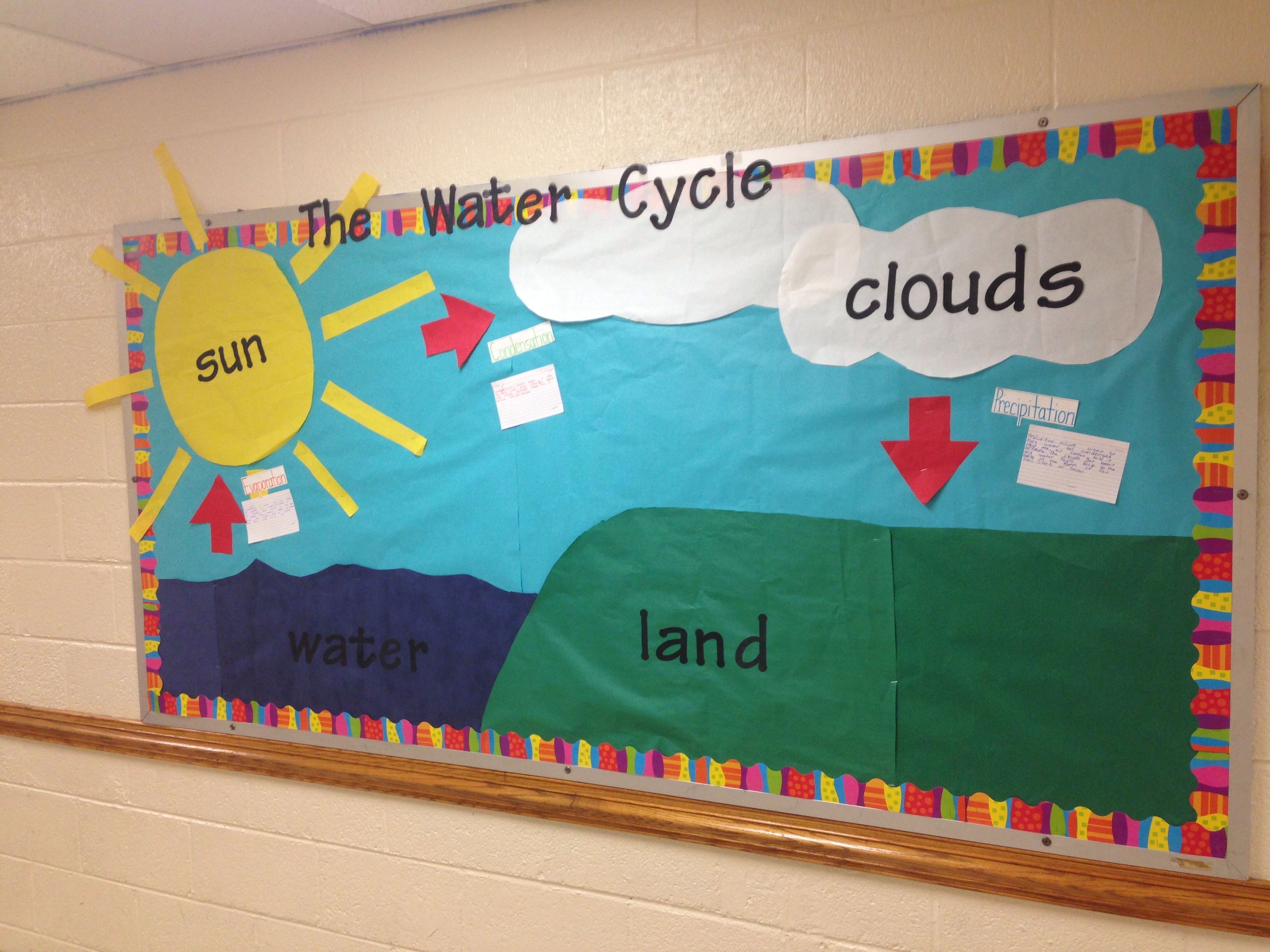 The Water Cycle Bulletin Board