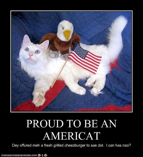 Funny Pictures Patriotic Fourth Of July Cats 4th Of July