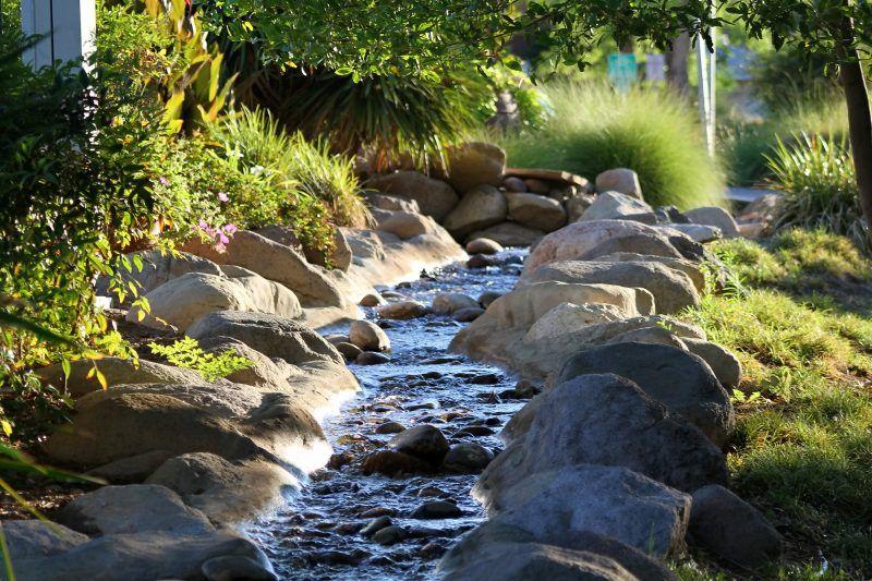 Bachlauf anlegen nützliche Tipps und lebendige Vorschläge Water