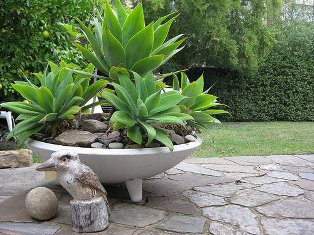 Marvelous Garden And Lawn , Concrete Garden Planters : Bowl Concrete Planters