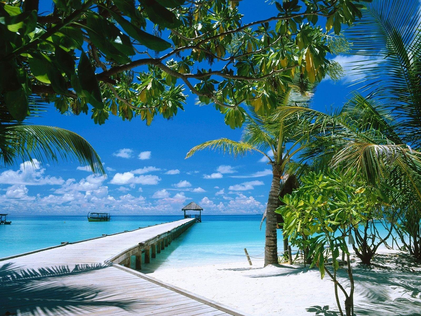 Tropical Beach Wallpaper Tropical Beach Hd Wallpaper