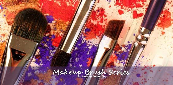 A Bit to Brush Against!  Investing in your makeup brushes is essential; this also means cleaning them regularly. Here are some DIY OPTIONS TO CLEANING YOUR MAKEUP BRUSHES.