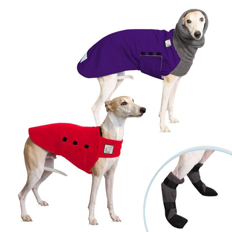 90bafc6f30ba9 Whippet Cold Climate Combo   Whippets!!   Dog winter coat, Dog coats ...