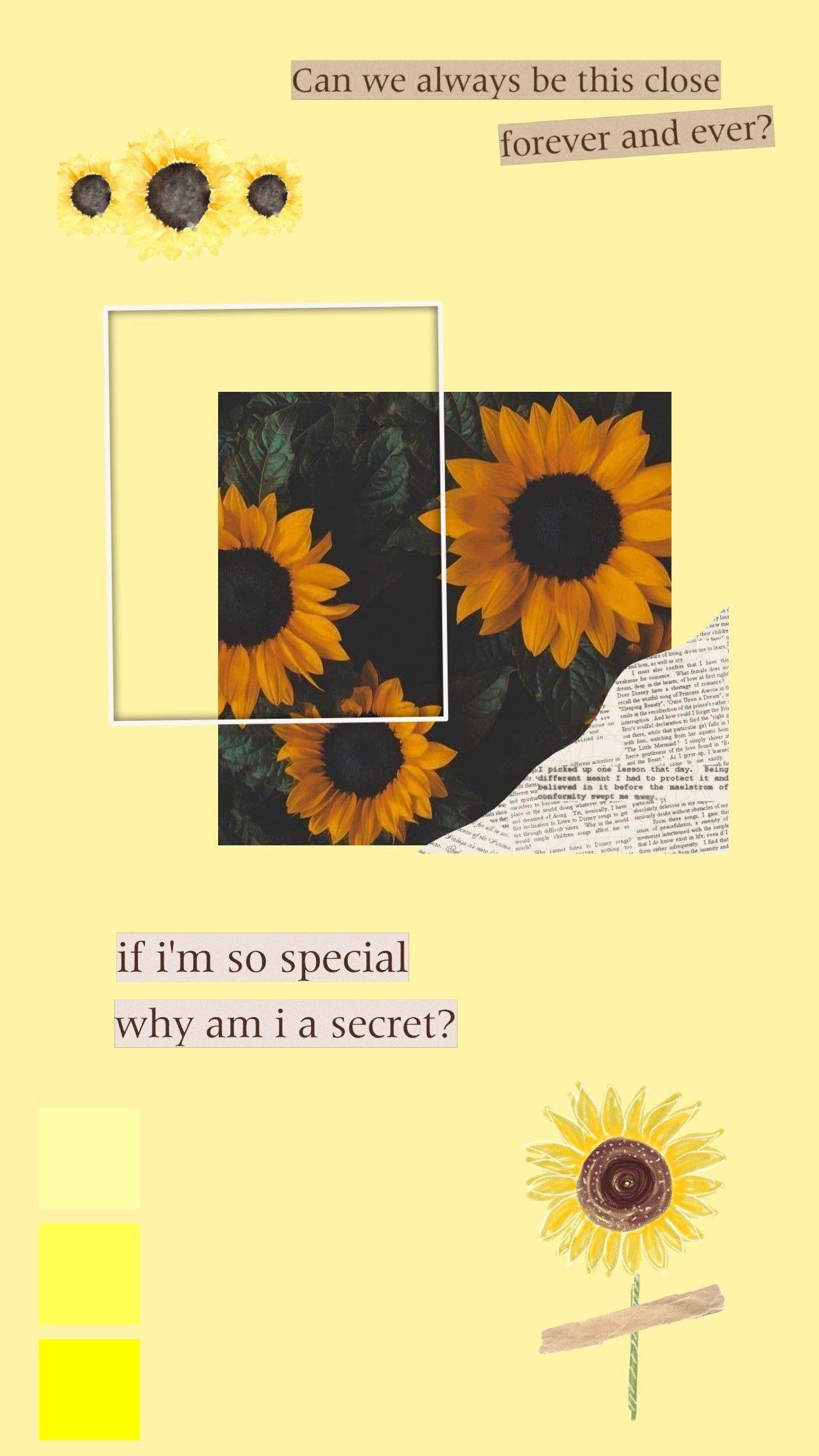 Sunflower Aesthetic Wallpaper 🌻