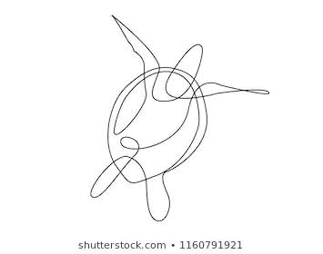 Sea Turtle Line Art Stock Illustrations, Images & Vectors