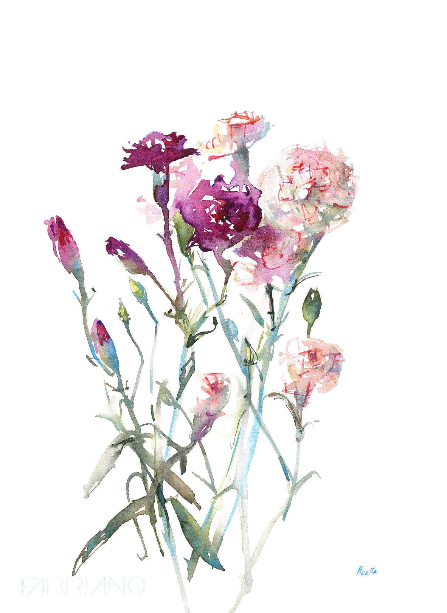 Print Of Carnations Flower Watercolor Illustration Spring Etsy Watercolor Flowers Paintings Watercolor Flowers Flower Illustration
