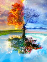 De vier seizoenen