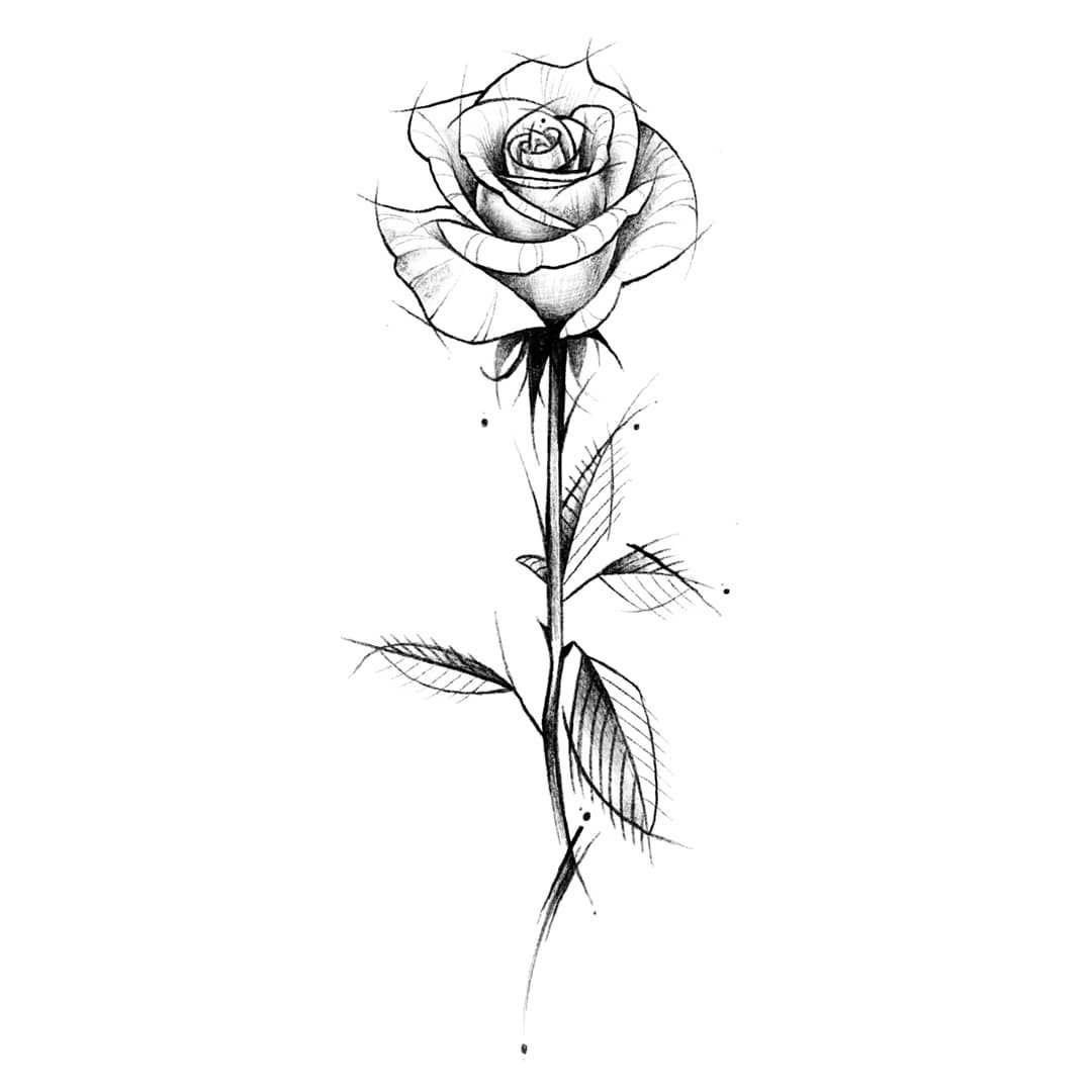 Rebeca Gaite On Instagram Diseno Design Diseno Art Arte Rosatattoo Rosetattoo Rosa Rose White Rose Tattoos Rose Tattoo Design Rose Drawing Tattoo
