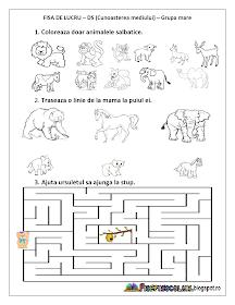 Adaugă Pin Pe Fișe De Colorat Povești