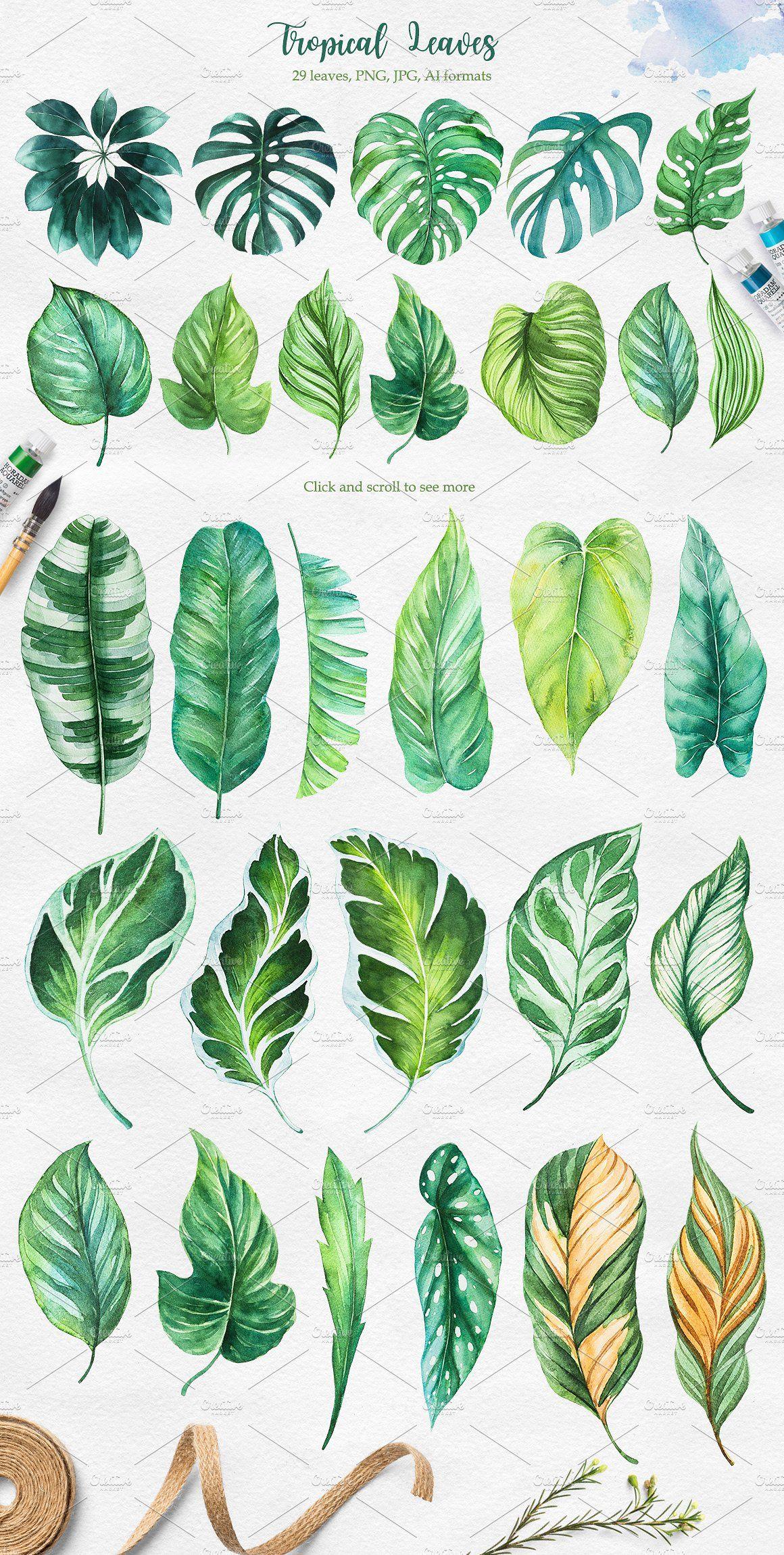 Tropical. Watercolor illustrations. #boutiques#cafes#smell#tropics