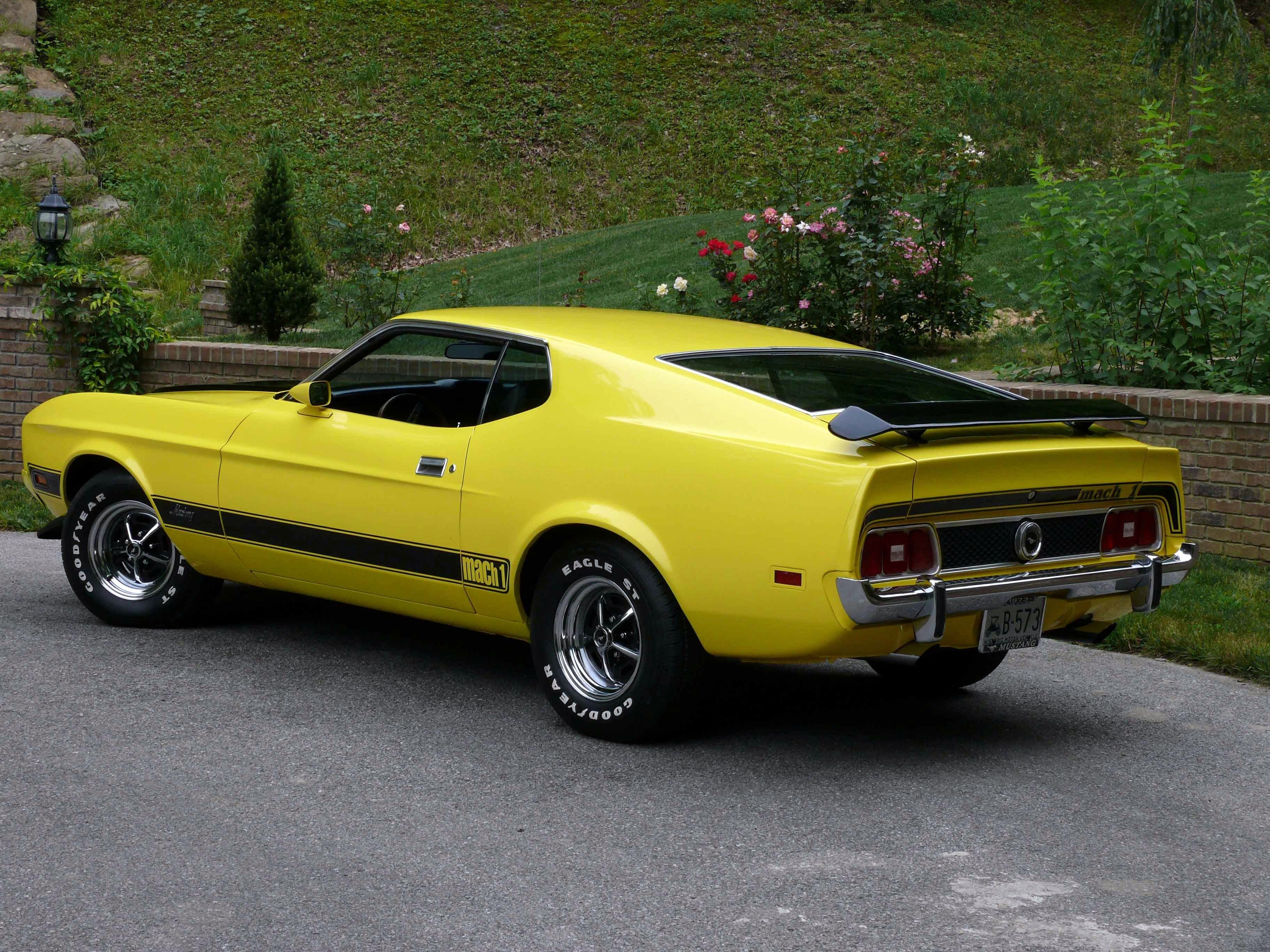 ford mustang mach 1 | mustang, 1973 mustang and ford mustang