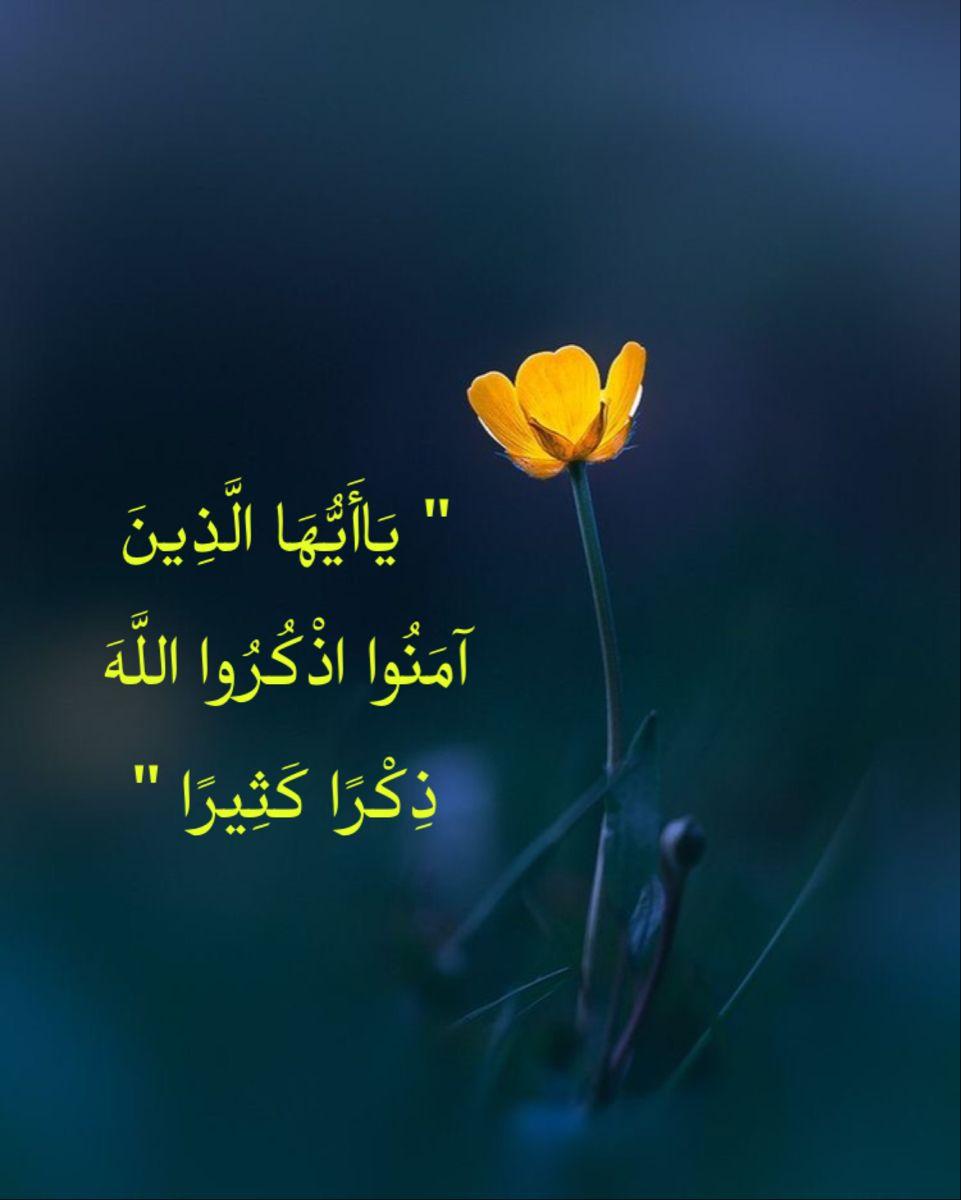 د ع اء Quran Quotes Arabic Quotes Quotes