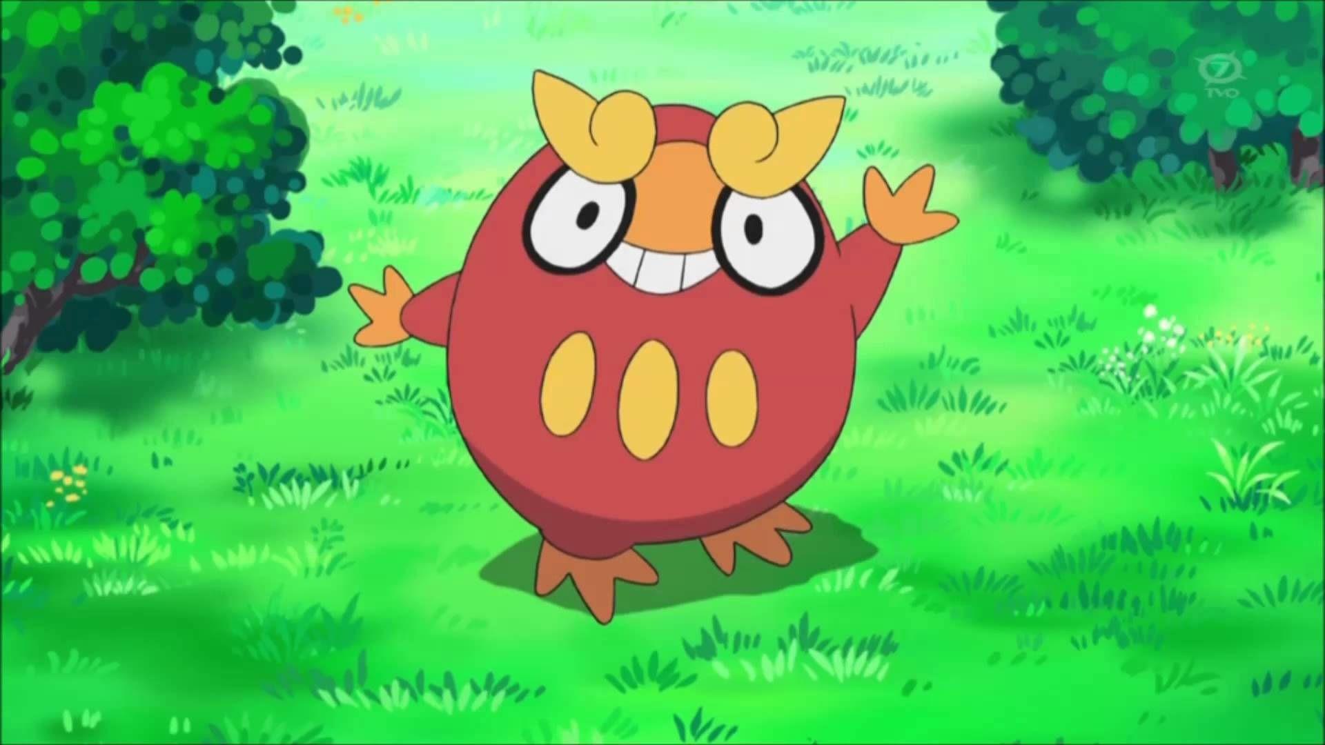 Tootsie roll owl gif