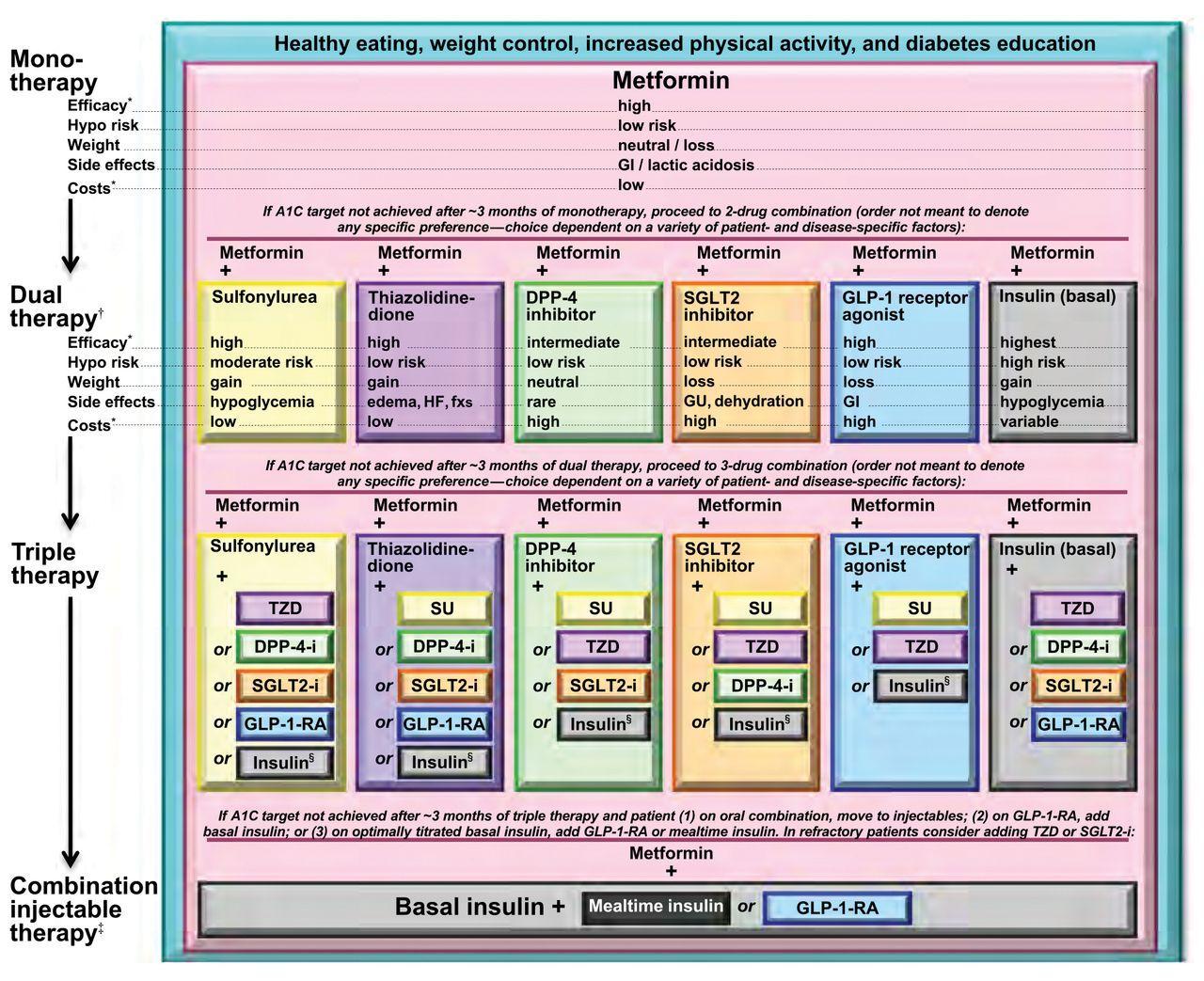 Image Result For Diabetes Oral Medication Algorithm