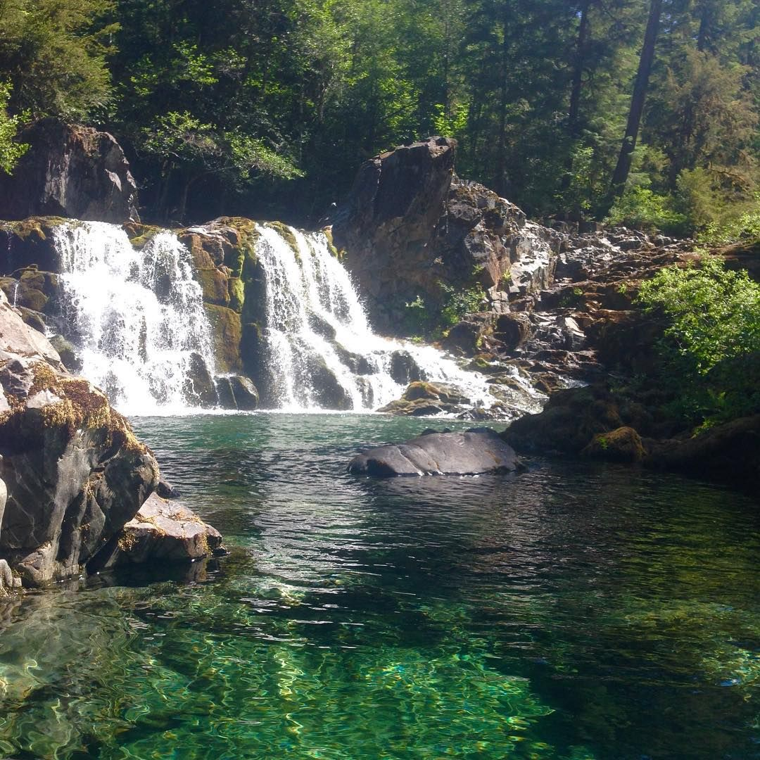 Opal Creek was surreal today with @jackbrallier #pnw #happytrails #opalcreek #hike #exploreoregon #oregon