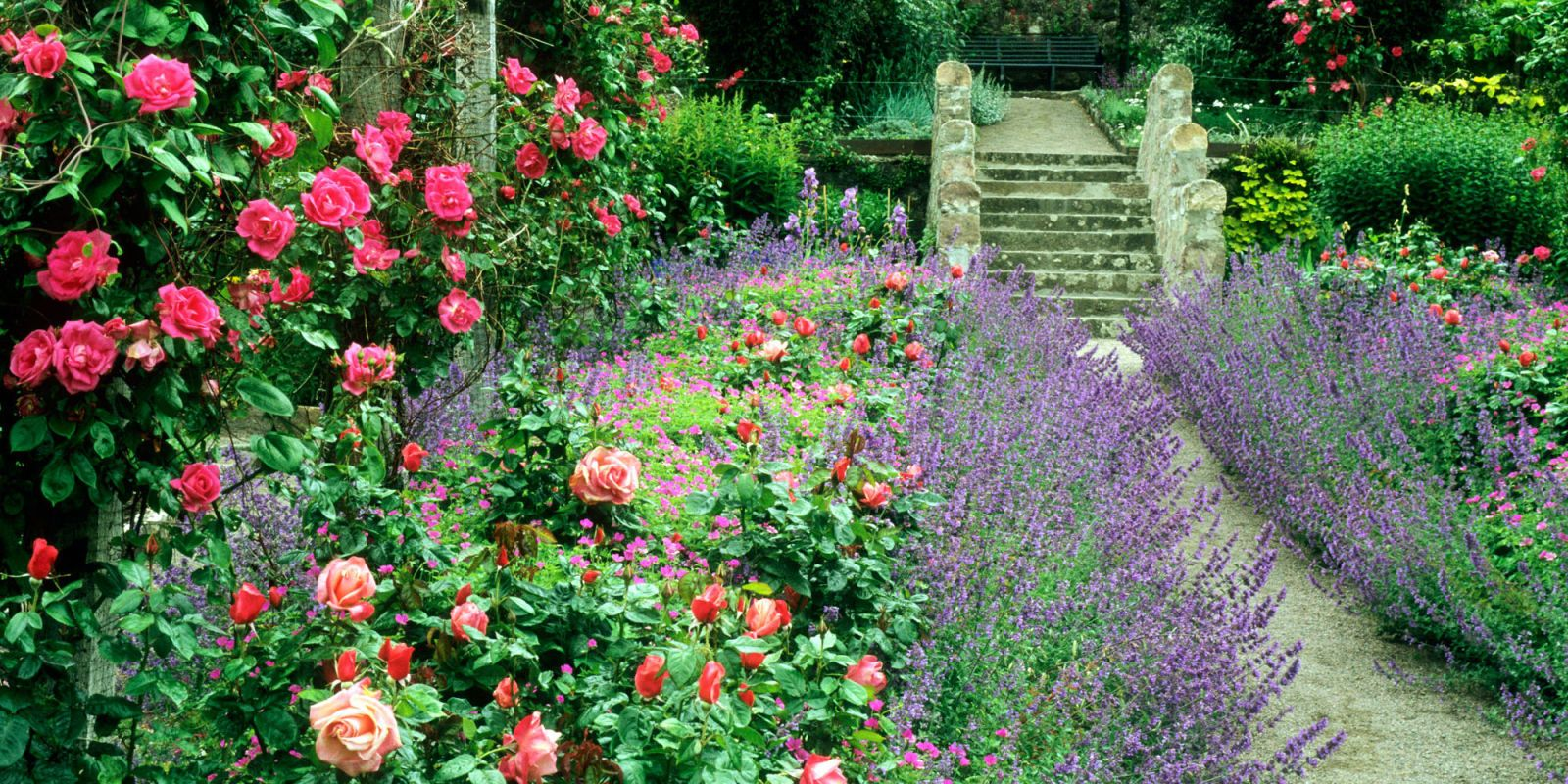 9 Lovely Ways to Make a Cottage-Style Garden