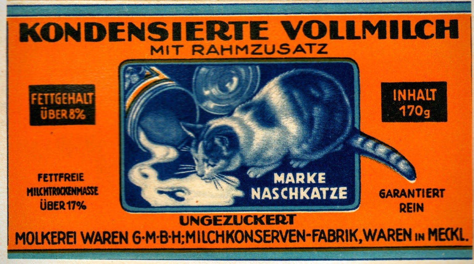 Katzen, Cat, Werbung, Advertising, Ad - Waren / Müritz, Mecklenburg, Germany, 1931
