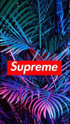 Supreme Wallpaper Tumblr Neonovye Oboi Oboi Letnie Oboi