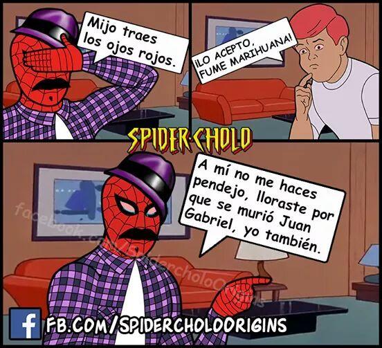 ce46da96f0d7af39e31a85d35358025f meme humor juangabriel spidercholo memes pinterest memes
