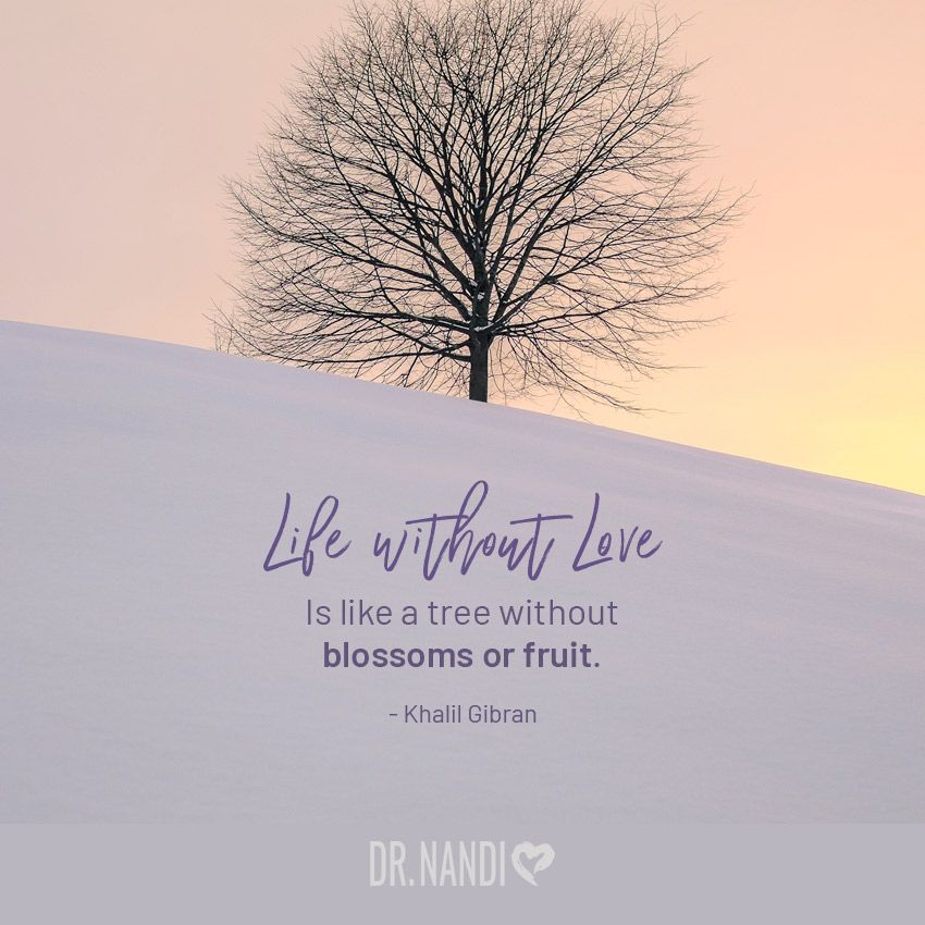 Home Page Tree Of Life Quotes