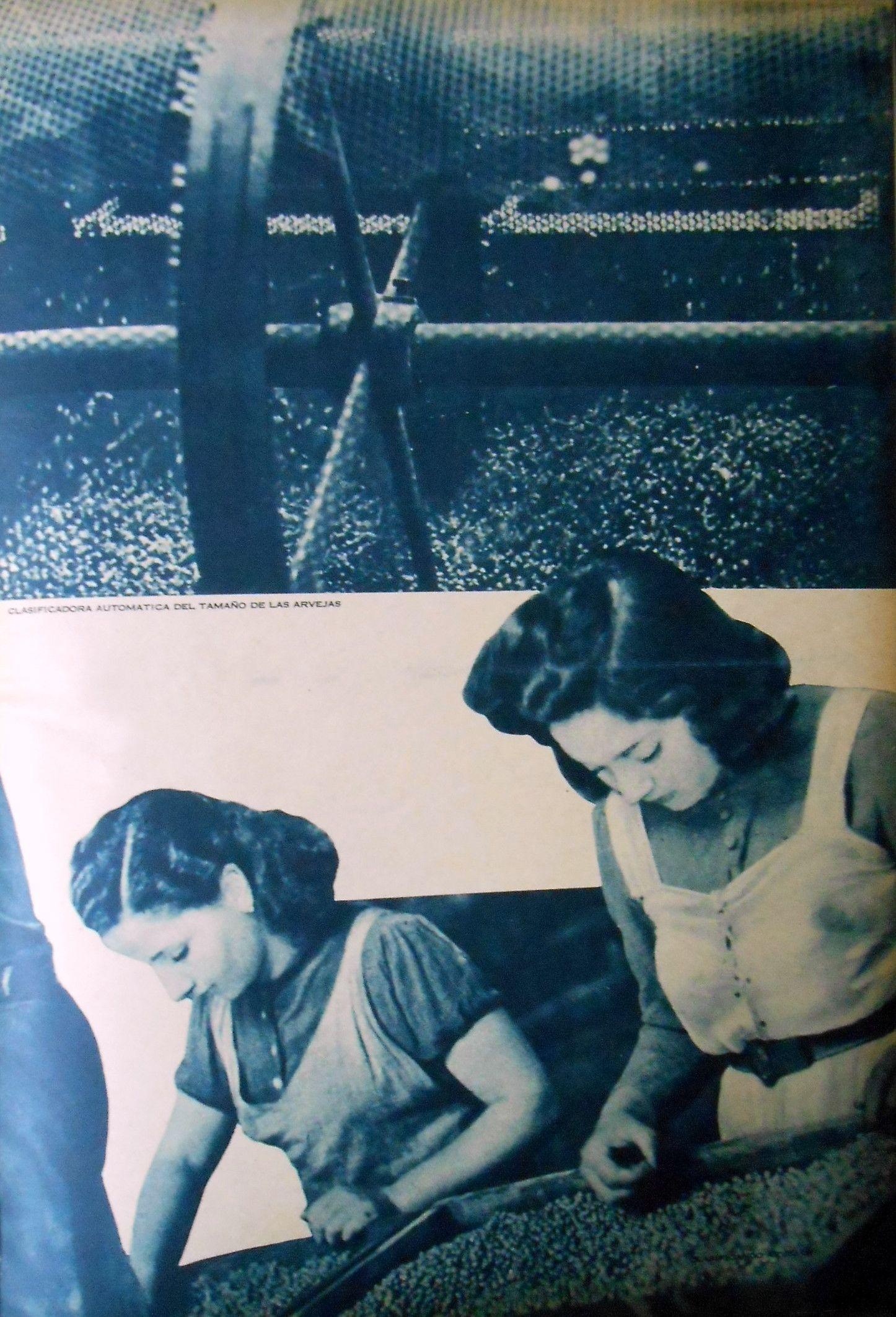 Clasificadora automática del tamaño de la arveja. Fuente: Revista M.A.N., nov-dic 1940.