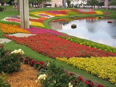 Disney Horticulturists