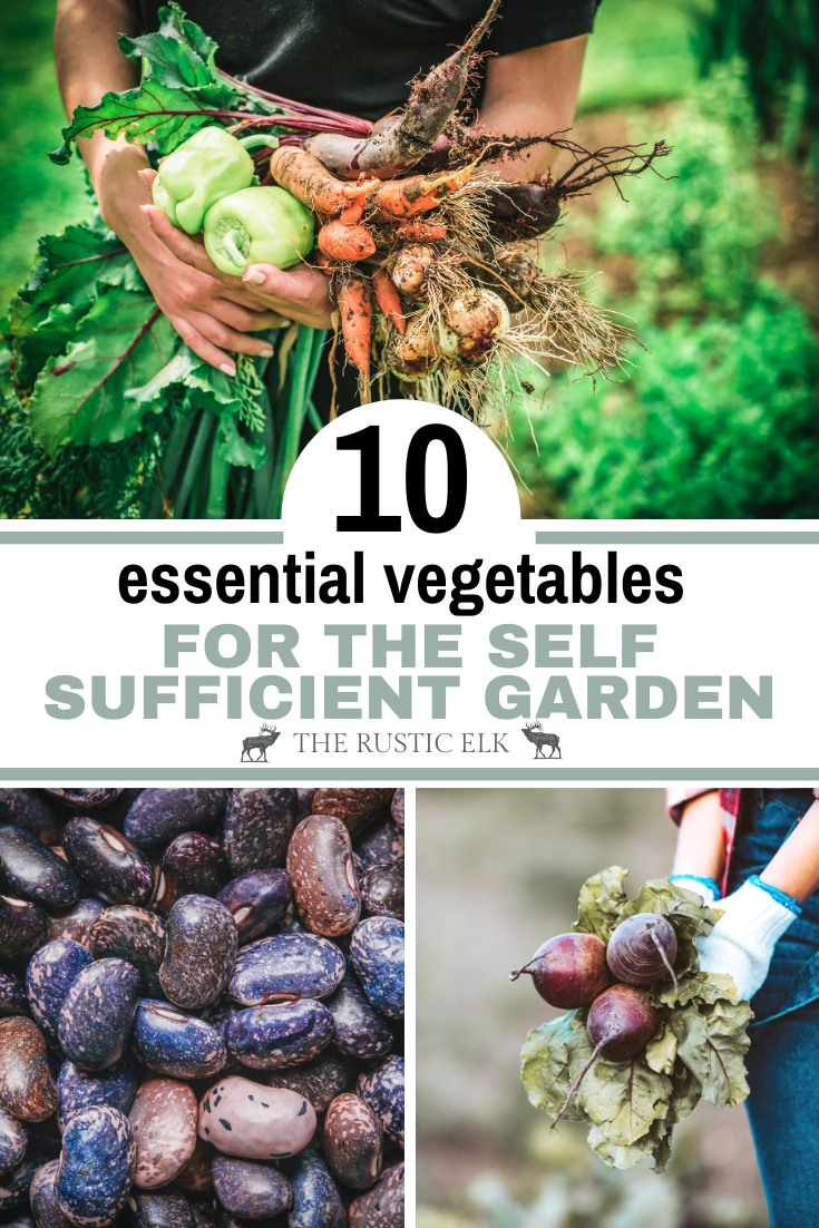 10 Essential Crops For A Self Sufficient Garden Growing