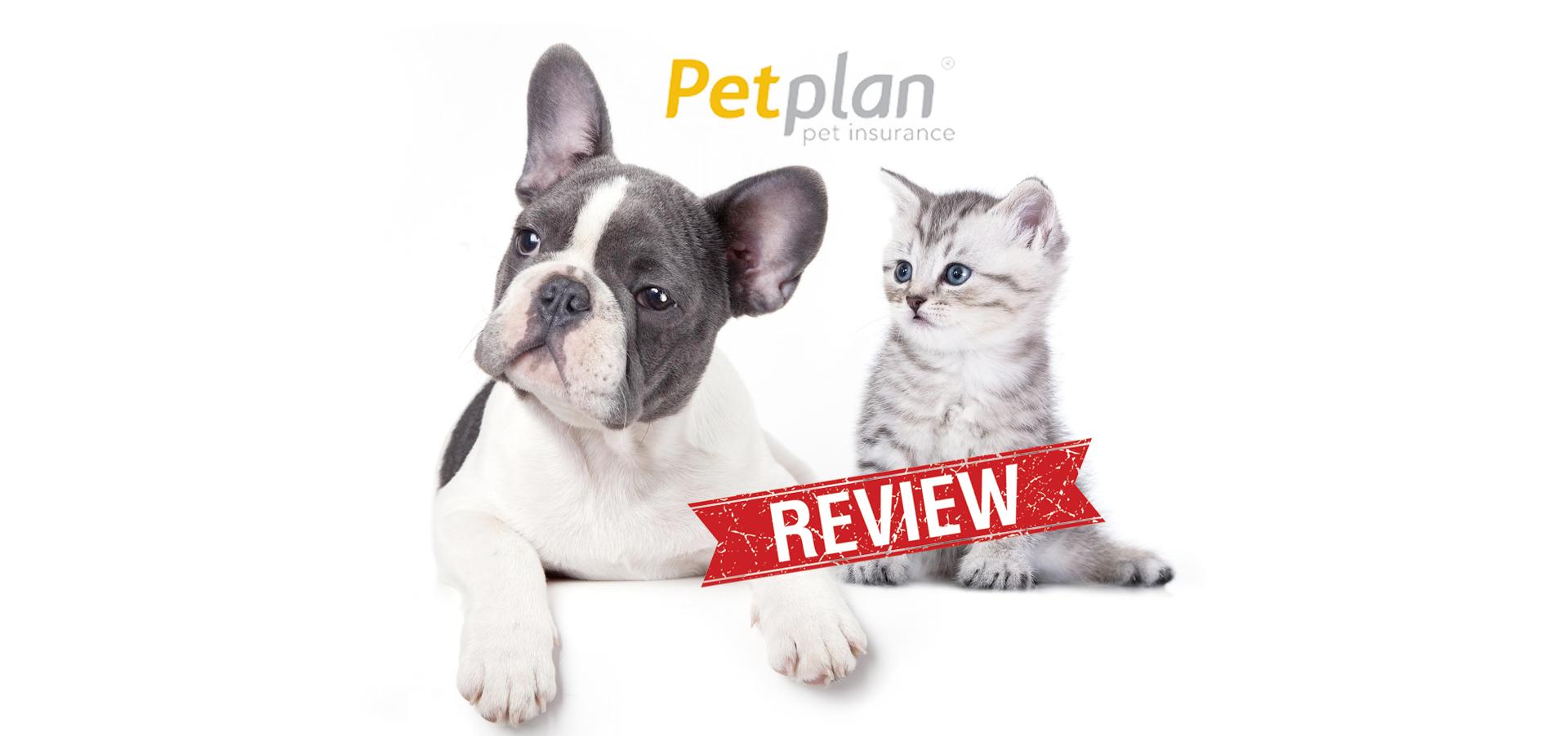 Petplan Pet Insurance Reviews Pet insurance reviews