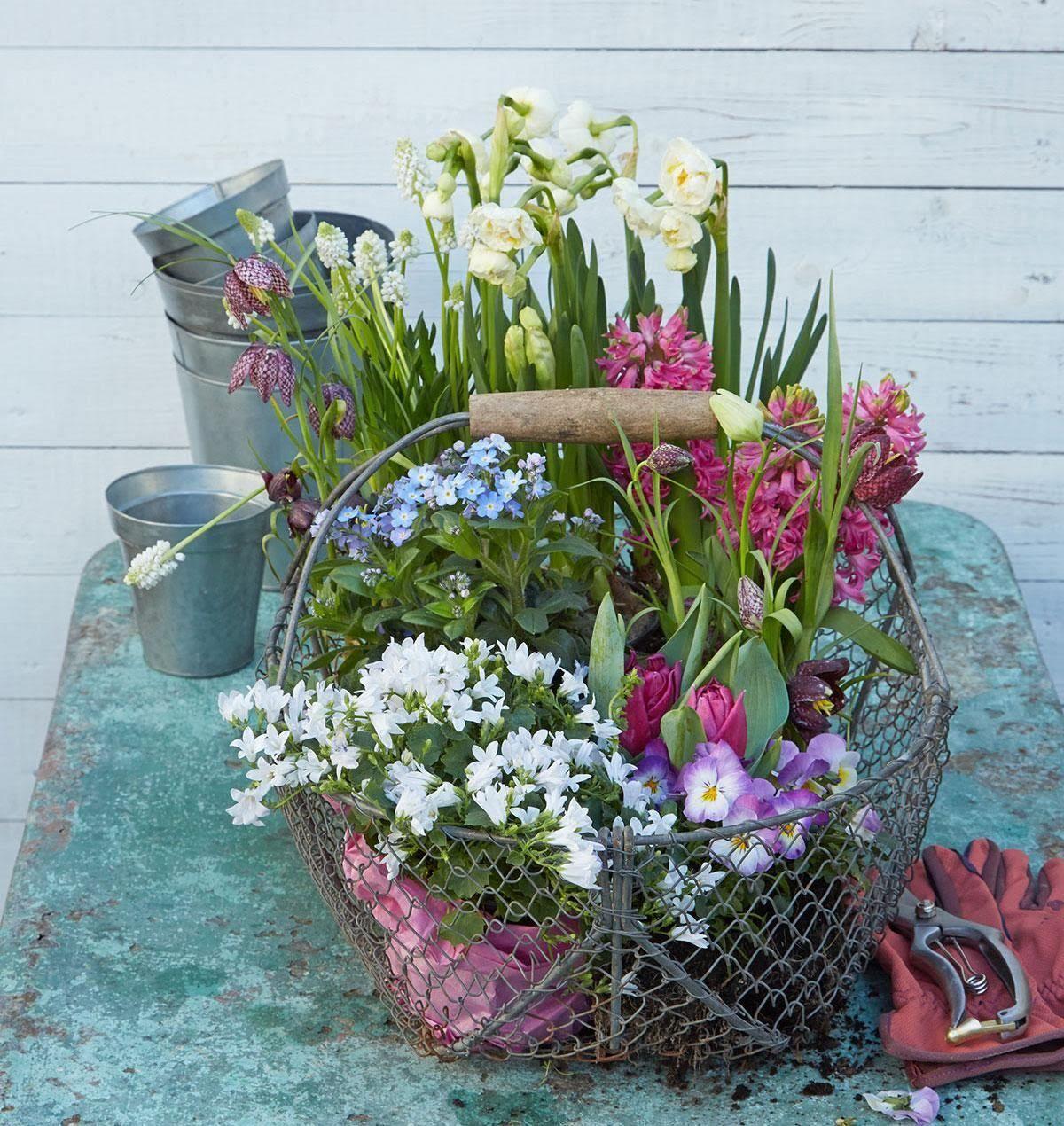 Fr hlingszweige als deko f r die vase tipps und ideen mandelzweige f r die vase let 39 s - Deko mit drahtkorb ...