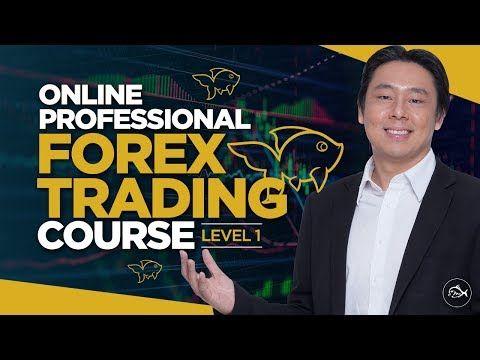 Adam khoo forex trading course