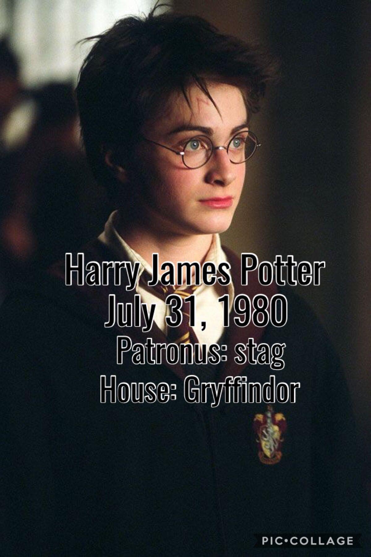 Harry Potter Harry Potter Scar Harry James Potter Harry Potter Facts