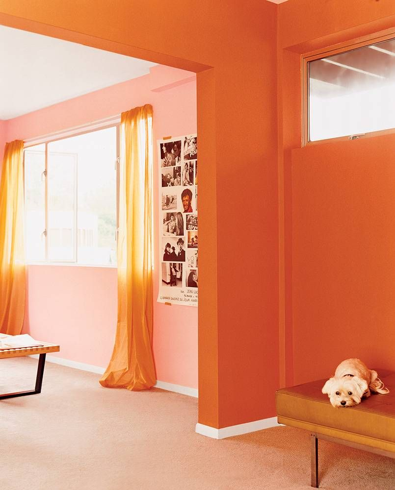 Home Decor And Decorating Ideas Photo Galleries Domino Orange Rooms Asian Paints Colour Shades Asian Paints Colours