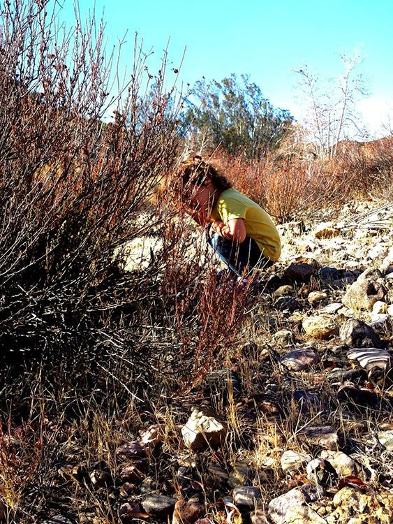 Playing Hide & Seek in the Santa Monica Mountains: Hiking The Peter Strauss Ranch | www.MommyHiker.com #OutdoorFamilies