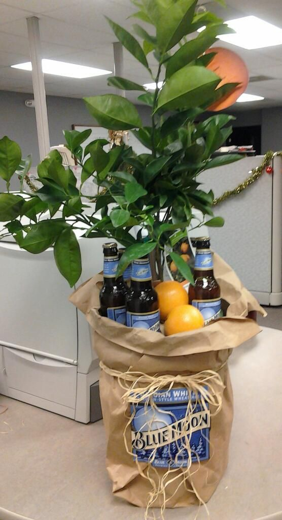 Housewarming  orange tree and blue moon what else do you need also best ts images ideas basket rh pinterest