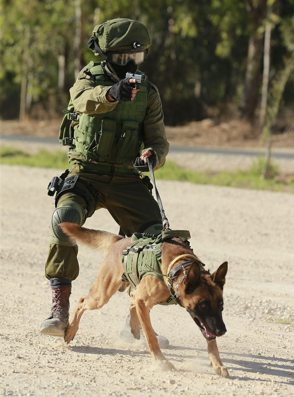 Military War K9 Hero Handler God Bless Protect Both Of You