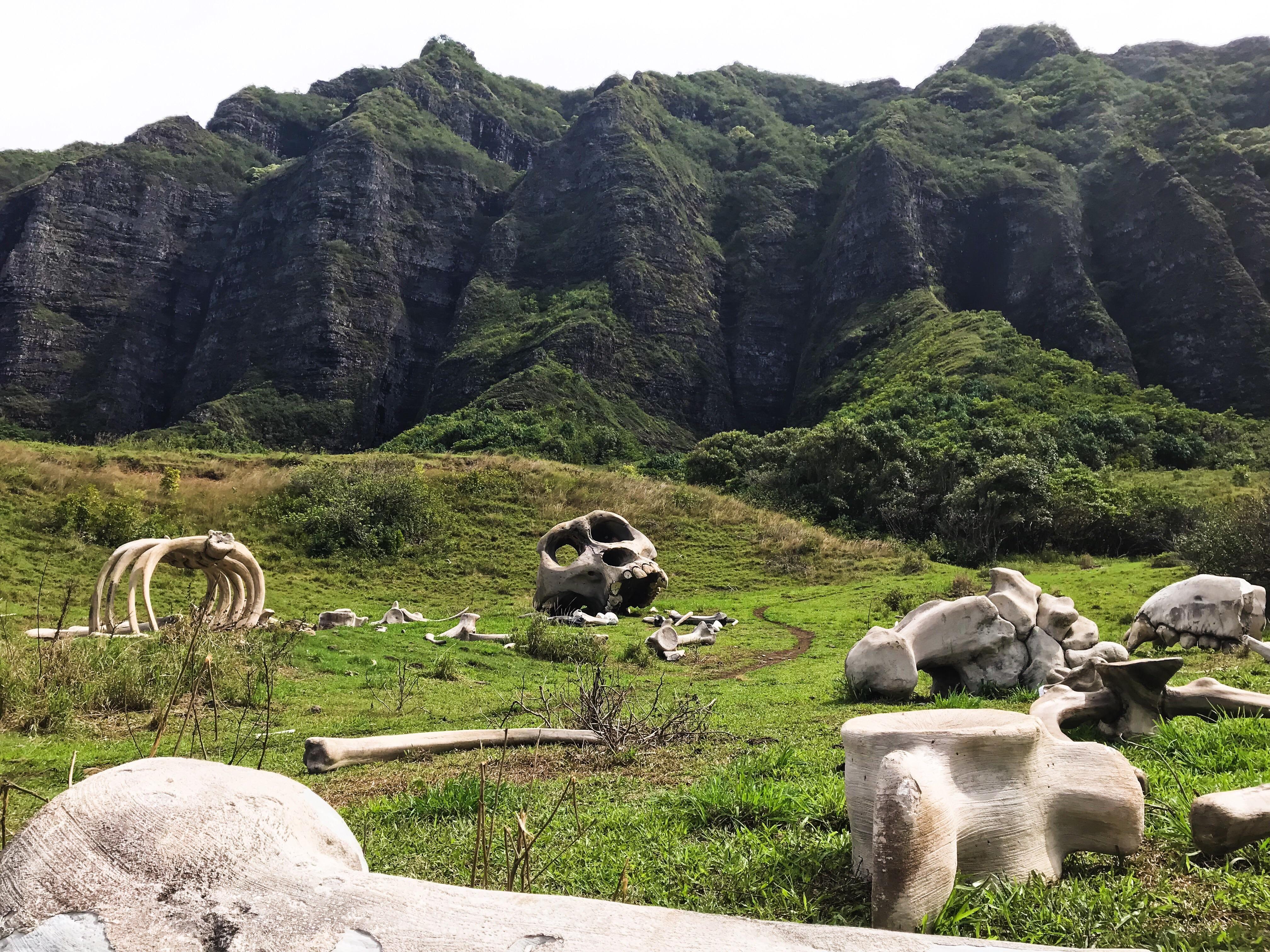Filming location for kong skull island in oahu hawaii