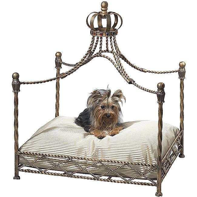 Antique Gold Iron Crown Canopy Pet Bed- for royals or pets who think they are royals!  sc 1 st  Pinterest & Your small four-legged friend will love the luxury of this antique ...