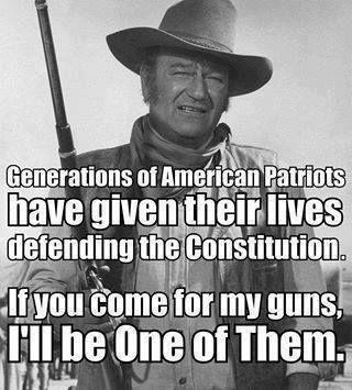 Pin On Gun Control