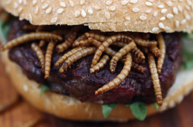 Pigeon Burger With Barbecue Worms Roastmaster Created Premium Pigeon Burgers For Rentokil S Pestaurant Feeding 2000 Hungry Lo Scary Food Gross Food Weird Food