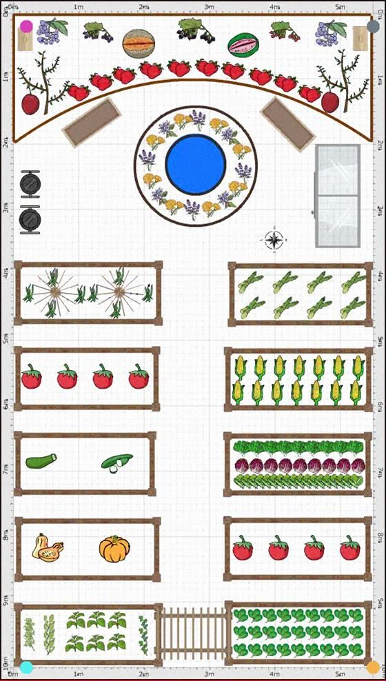 What I Would Like My Veggie Patch To Look Like. in 2020 ...