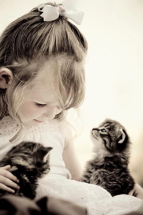 A Little Girl Playing With 2 Little Kitties Kids With Animals