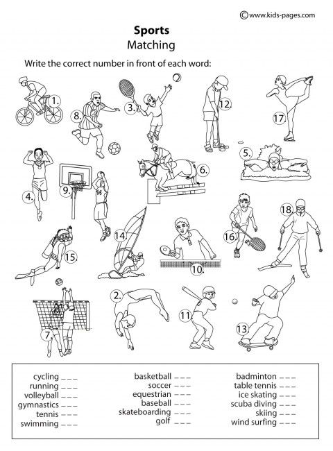 Kids Pages Sports Matching B Physical Education Lessons