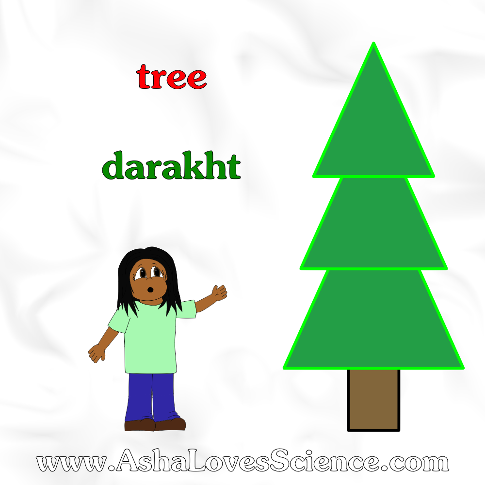 Merry Christmas From Asha Loves Science Tree Darakht Hindi Urdu Words From Asha Loves Science Urdu Words Language Works Hindi Words