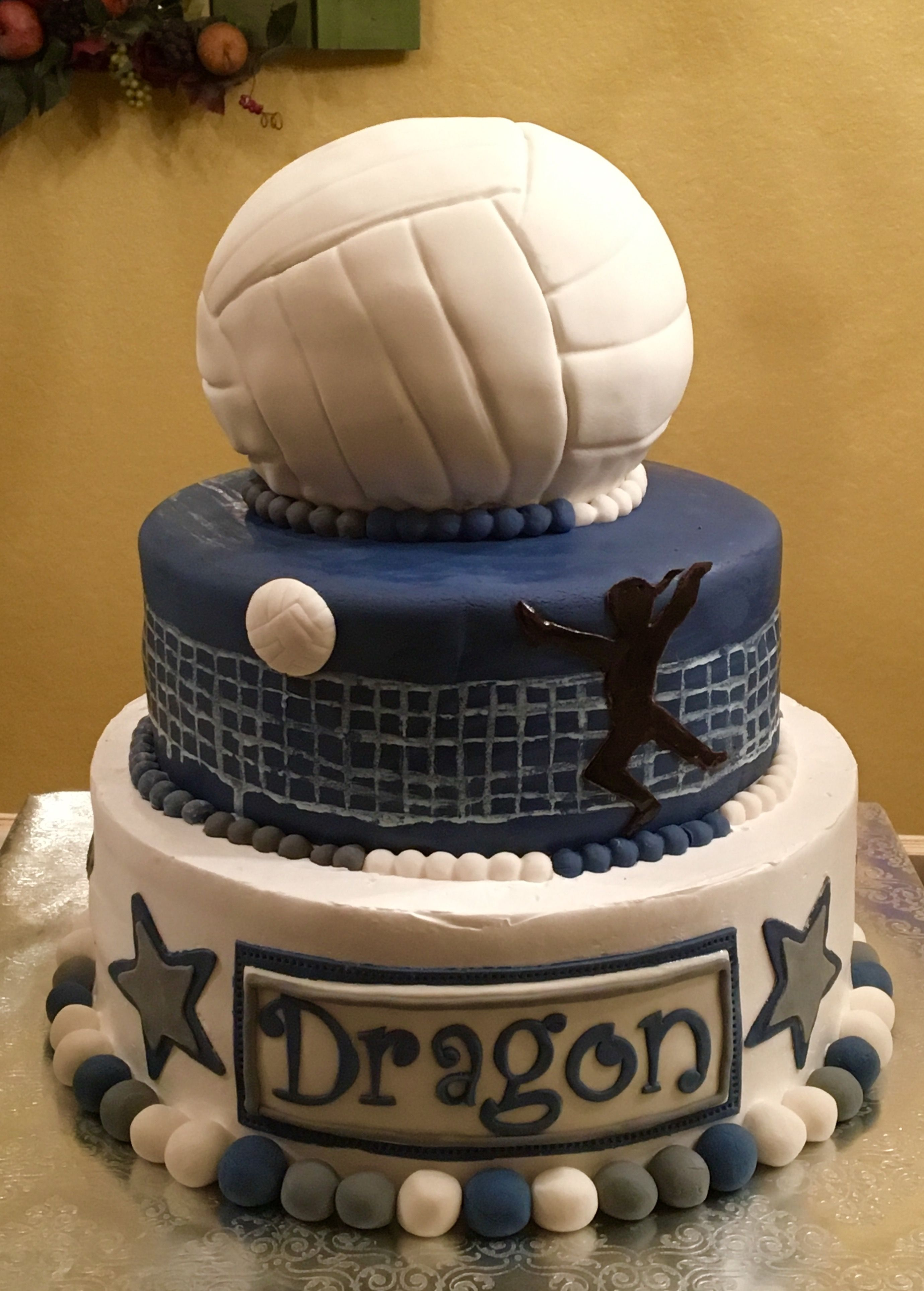 Volleyball Game Cake Girl Birthday Cakes Pinterest