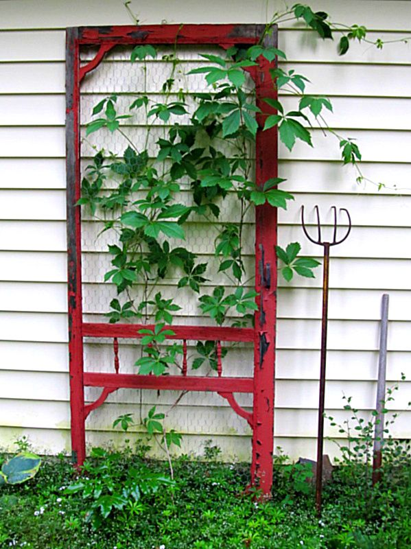 Marvelous Unique Trellis Ideas Part - 8: Pinterest