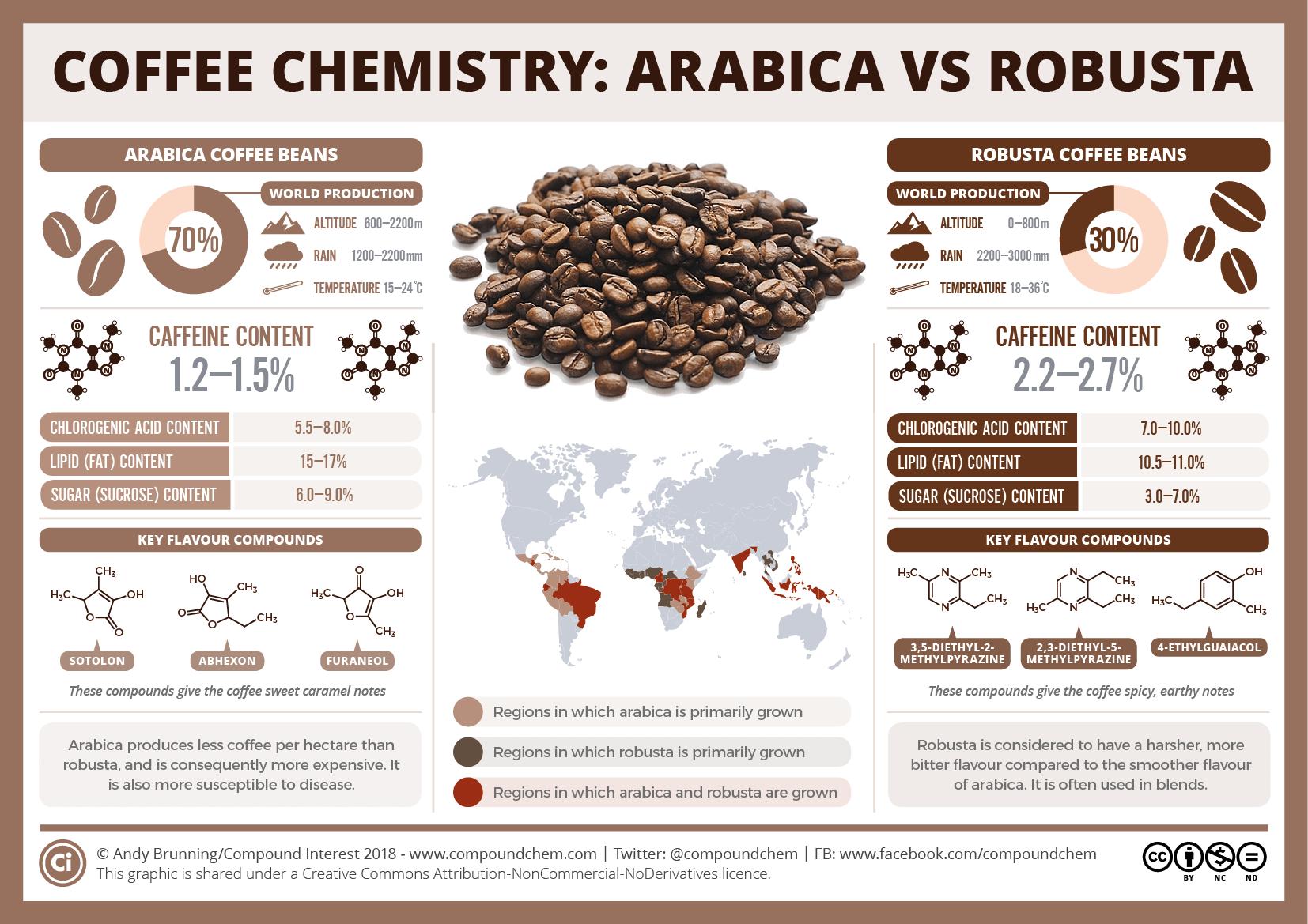 International Coffee Day Arabica vs robusta Types of