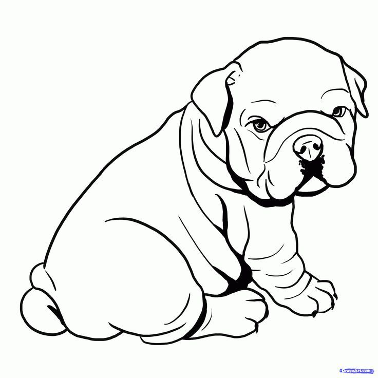 Image Result For Animal Line Silhouette Bulldog Drawing