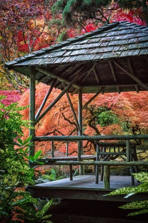 Japanese Garden at Butchart Gardens Victoria British Columbia. #japanesegarden #...,  #Britis... #butchartgardens